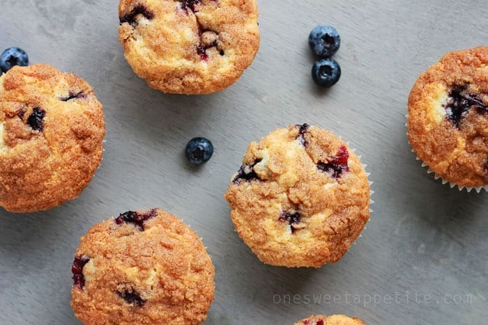 Blueberry Muffins sitting on a grey counter