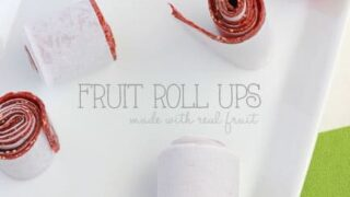Strawberry Fruit Roll Up Recipe