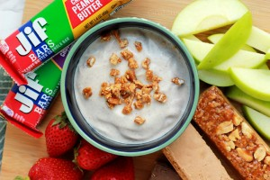 Cinnamon Honey Yogurt Dip
