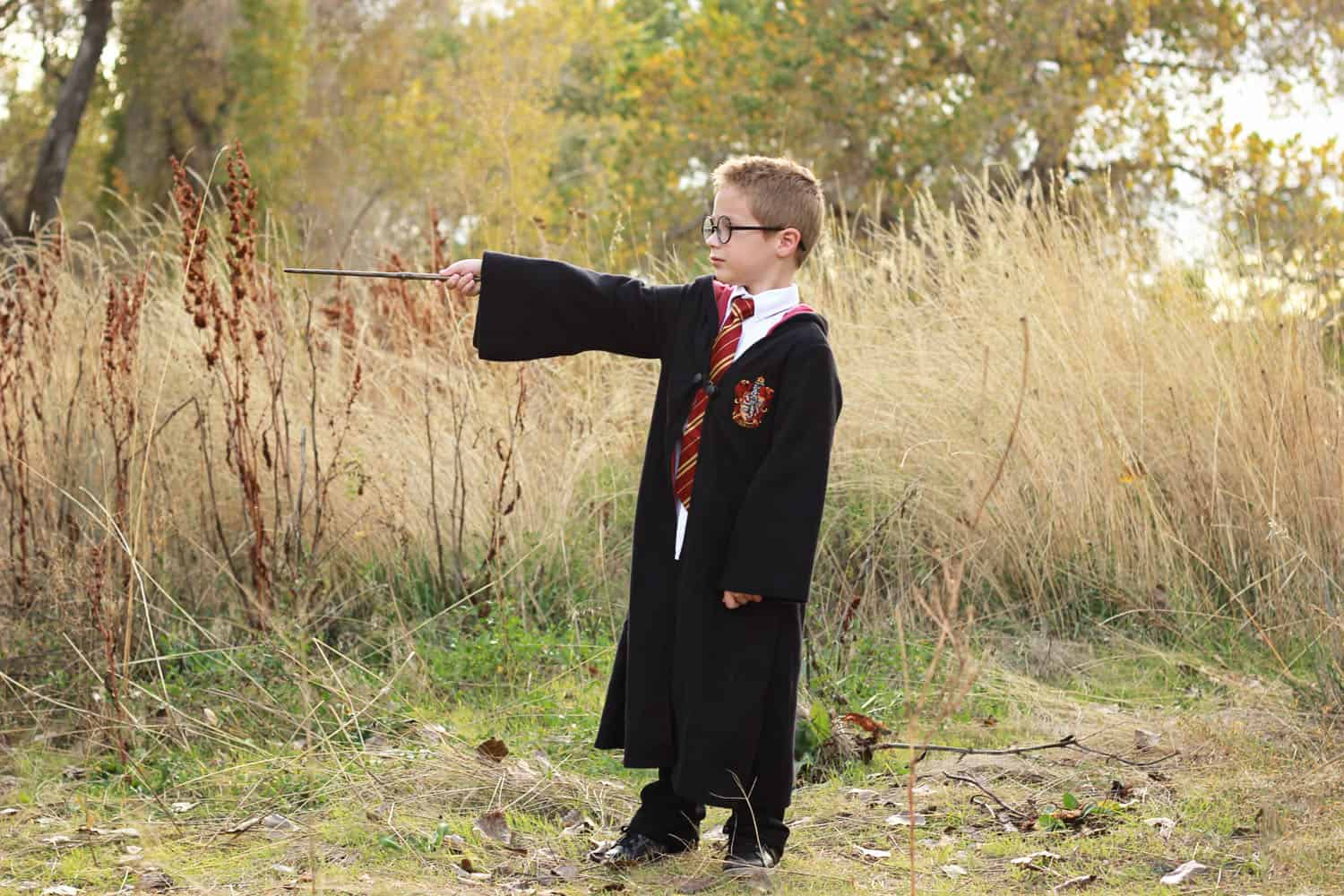 Harry Potter Costume on One Sweet Appetite