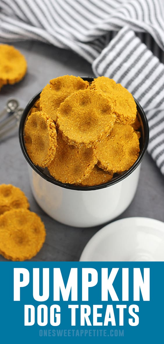 These homemadePumpkin Dog Treats are the perfect fall cookie for your furry friends! Made with pure pumpkin, eggs, peanut butter, and oat flour!