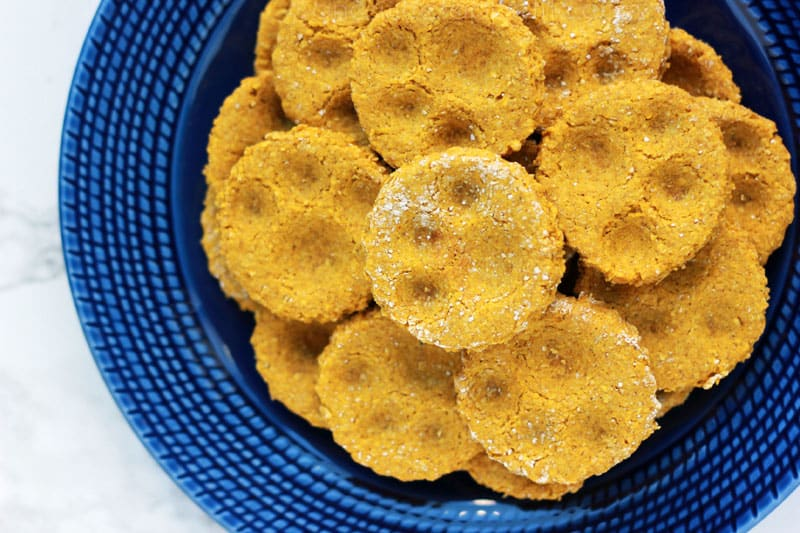 pumpkin-dog-treats-on-One-Sweet-Appetite