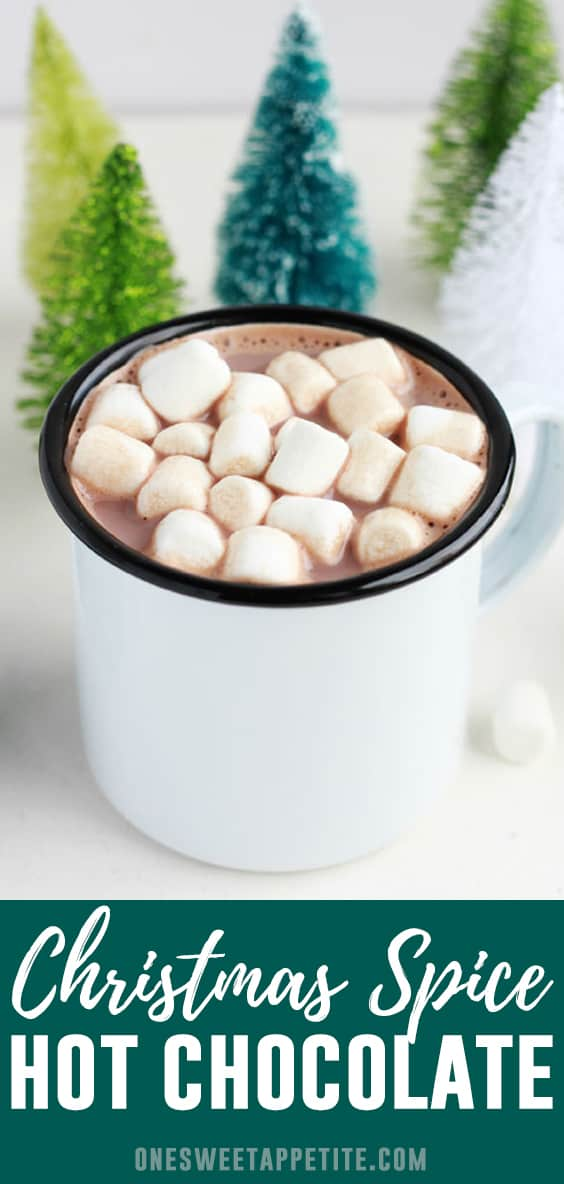 This Christmas Cocoa is the perfect way to warm your belly this holiday season! A classic Hot Chocolate Recipe is sprinkled with holiday spices for a unique and tasty version of the classic.