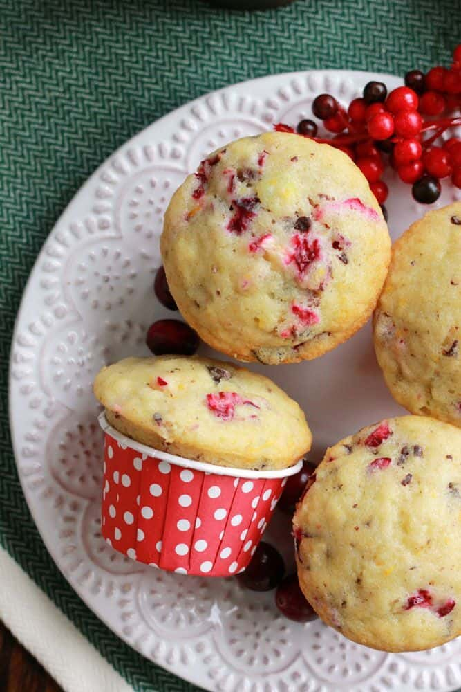 Cranberry Chocolate Chip Muffins