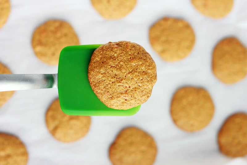 Baked cookie on spatula