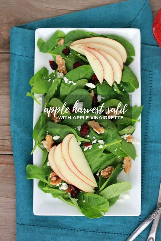 apple harvest salad with apple vinaigrette