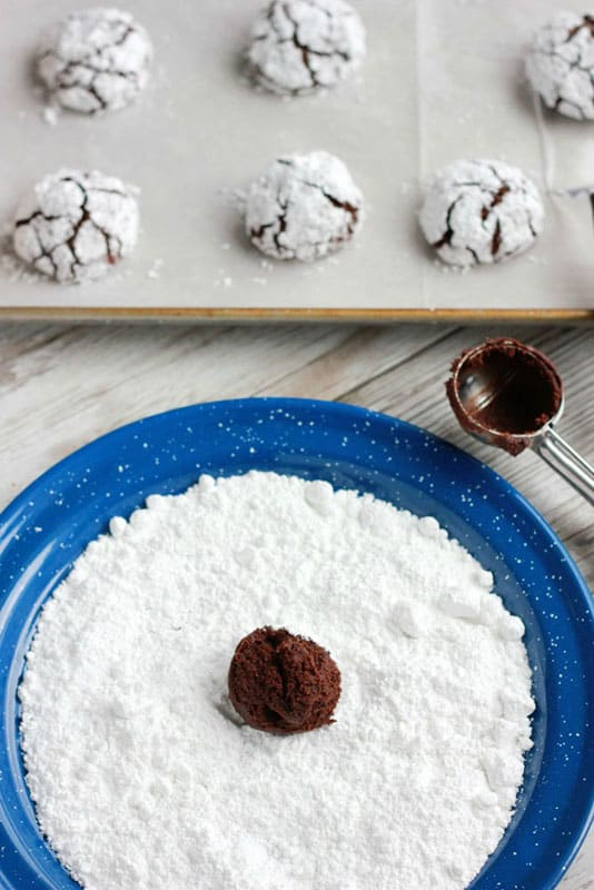 Chocolate cookie dough ball being rolled in powdered sugar