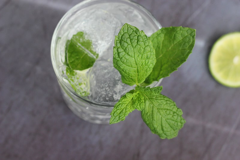 Mint Mojito with Tequila
