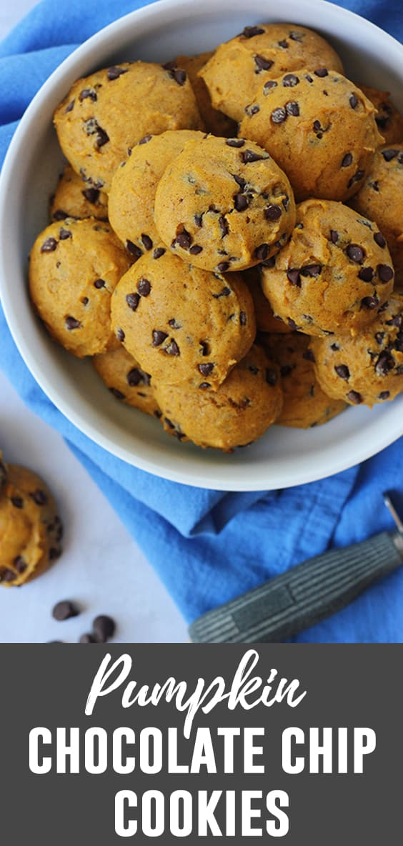 This is the ultimate Pumpkin Chocolate Chip Cookie recipe! Better than store bought and simple to make! All you need is a can of pumpkin puree and you're ready to get started!
