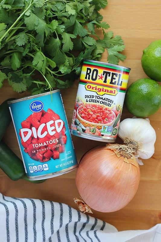 ingredients for blender salsa