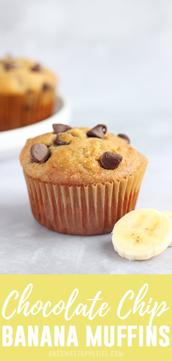 Try our favorite chocolate chip banana muffins recipe. Minimal ingredients and a simple recipe to follow leaving you with moist banana bread muffins!