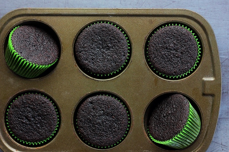 chocolate cupcakes in green wrappers inside a cupcake tin