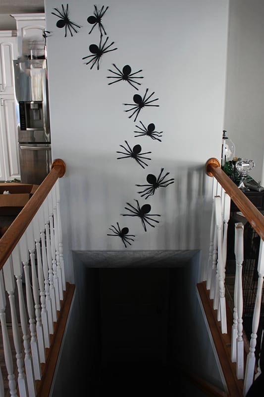 Spiders on a wall in a line